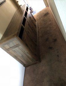 Flooring 43